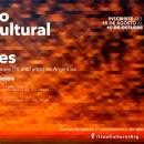 PRÓRROGA Premio Itaú Cultural de Artes Visuales 2014/15